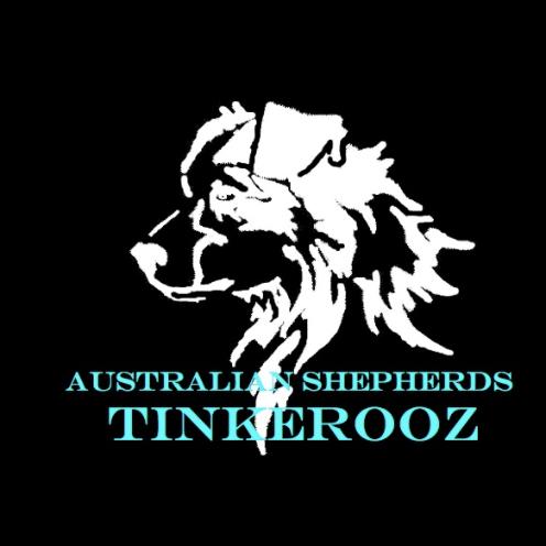 tinkerooz