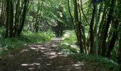 Trail Hybrid bike Wanze - Wanze - Marchin - Sollière ( circuit ) - Photo 4