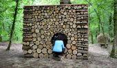 Trail Walk Gesves - SENTIERS D'ART - 141 km - Ciney, Gesves, Hamois, Havelange, Ohey et Somme-Leuze - Photo 8