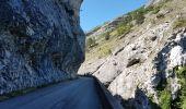 Trail CREST -  - Photo 10