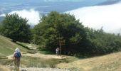 Trail SAINT-JEAN-PIED-DE-PORT - CcStJacques-31-StJeanPiedDePort-Roncesvalles-20090817 - Photo 3