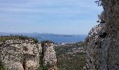 Trail Walk LA CIOTAT - la ciotat - Photo 8