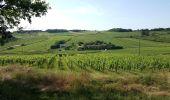 Randonnée Marche SAINT-JEAN-DES-VIGNES - Le tour des villages des pierres dorées jour 4 - Photo 1
