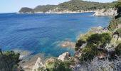 Trail HYERES - presqu'île de gien partie 2 - Photo 2