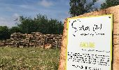 Trail Gesves - SENTIERS D'ART - 141 km - Ciney, Gesves, Hamois, Havelange, Ohey et Somme-Leuze - Photo 1