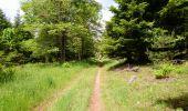 Trail ALLANCHE -  Cantal-Maillargues-Puy de Mathonière - 12.8km 320m 4h00 - 2019 06 25 - Photo 13