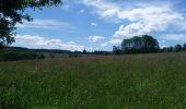 Trail Theux - autour de Bronromme a travers campagne fagne et forêt  - Photo 4