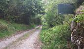 Trail Walk QUILLAN - Cathares E4 Quillan Quirbajou 04.06.2019 - Photo 1