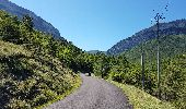 Trail CREST -  - Photo 11