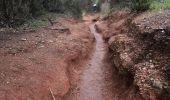 Trail Walk HYERES - Presqu'île de Giens - Photo 4