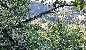 Trail Walk STOSSWIHR - Gaschney - Tour du Petit Hohneck - Photo 1