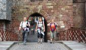 Trail SAINT-JEAN-PIED-DE-PORT - CcStJacques-31-StJeanPiedDePort-Roncesvalles-20090817 - Photo 6