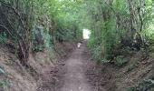 Trail Walk La Calamine - La Calamine Welky  - Photo 1