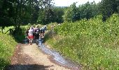 Trail Walk Vielsalm - Mesa 1 - Photo 3