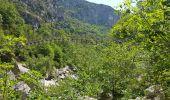 Trail AIGUINES - sentier de l'imbut - Photo 5