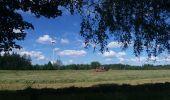 Trail Theux - autour de Bronromme a travers campagne fagne et forêt  - Photo 1