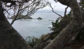 Trail Walk HYERES - Presqu'île de Giens - Photo 7