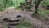 Trail Walk Unknown - Příhrazské skály - Photo 1