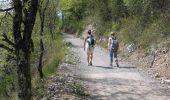 Trail Walk GRENOBLE - Sur les Pas des Huguenots  - Grenoble - Biviers - Photo 4