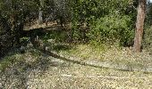 Trail Walk AMPUS - 20190309 Ampus Fontigon reco partielle - Photo 2