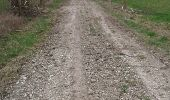 Trail BARBEREY-SAINT-SULPICE - Barberey 20,5km le 15-03-2019 - Photo 5
