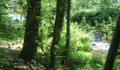Randonnée Marche Gesves - GESVES- Le Pré D'Amite- N°07- Bois  - Photo 8