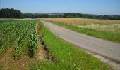 Randonnée Marche Ohey - OHEY- Jallet (Hodoumont) N°14 Patrimoine  - Photo 5