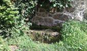Trail Walk SAINT-FELICIEN - le moulin des gaillards - Photo 10