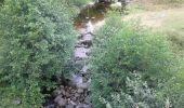 Trail Walk SAINT-FELICIEN - le moulin des gaillards - Photo 8