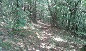 Trail Walk SAINT-FELICIEN - le moulin des gaillards - Photo 7