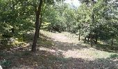 Trail Walk SAINT-FELICIEN - le moulin des gaillards - Photo 4