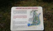 Trail Walk SAINT-FELICIEN - le moulin des gaillards - Photo 3
