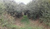 Trail Walk SAINT-FELICIEN - le moulin des gaillards - Photo 2