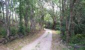 Trail Walk FONTCOUVERTE-LA-TOUSSUIRE - Fontcouverte bottieres - Photo 18