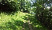 Trail Walk FONTCOUVERTE-LA-TOUSSUIRE - Fontcouverte bottieres - Photo 16