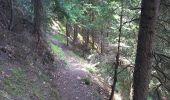 Trail Walk FONTCOUVERTE-LA-TOUSSUIRE - Fontcouverte bottieres - Photo 11