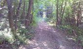 Trail Walk FONTCOUVERTE-LA-TOUSSUIRE - Fontcouverte bottieres - Photo 10