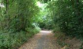 Trail Walk ORSAY - De Orsay à Igny - Photo 17