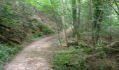 Trail Walk ORSAY - De Orsay à Igny - Photo 8