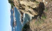 Trail HYERES - Badine - Plaine Bouisson - Photo 2