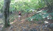Trail Walk DOMPNAC - dompnac - Photo 1