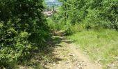Trail Mountain bike LOZANNE - La 5ème Vélozannaise (2014-VTT-45km) - Lozanne - Photo 3