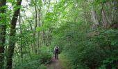 Randonnée Marche Couvin - Balade au fil des Vallées Couvinoise - Photo 1