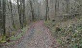 Randonnée Tellin - Balade au départ de Tellin - Photo 7