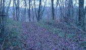 Randonnée Tellin - Balade au départ de Tellin - Photo 2