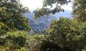 Randonnée Anhée - De la plante à Godinne - Photo 4