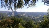 Randonnée Anhée - De la plante à Godinne - Photo 3