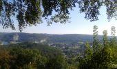 Randonnée Anhée - De la plante à Godinne - Photo 2