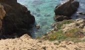 Trail HYERES - la badine - port du Niel par le littoral retour badine - Photo 2