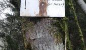 Randonnée Marche SAINT-AME - entre Duché de Lorraine et Abbaye du St Mont - Photo 14